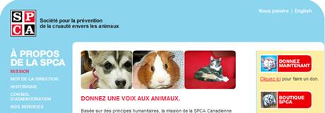Le nouveau site de la SPCA de Montréal, aux couleurs de la campagne